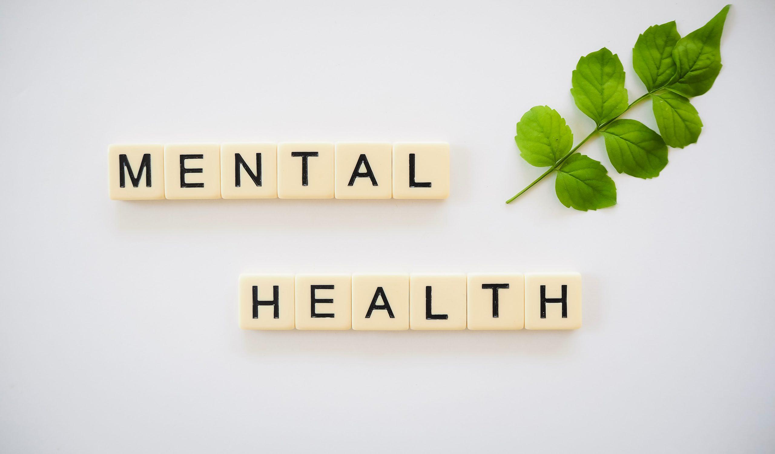 Mental health. Zdrowie psychiczne w organizacjach